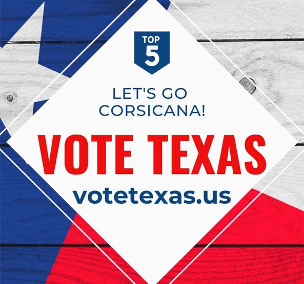 Red White and Blue Vote Texas Graphic