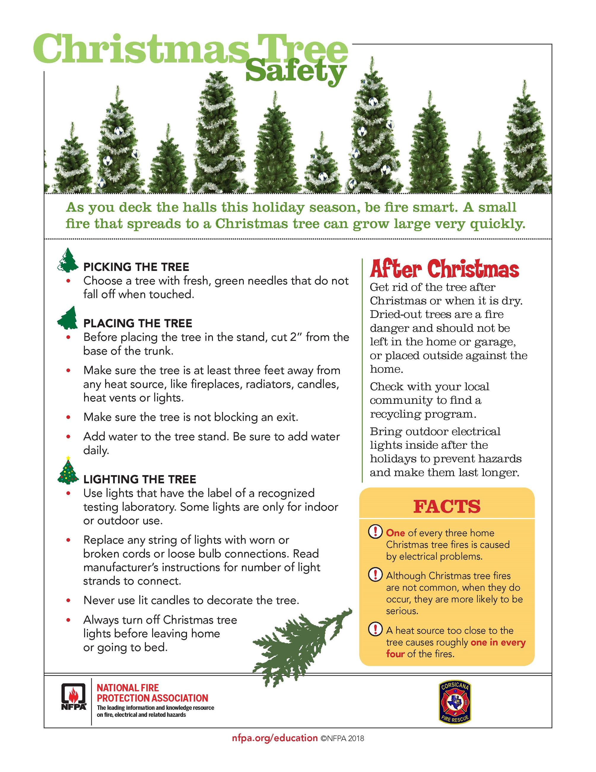 NFPA Christmas Tree Safety Tips